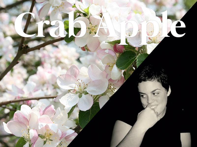 crabapple flores de bach terapia floral evolutiva luis jimenez