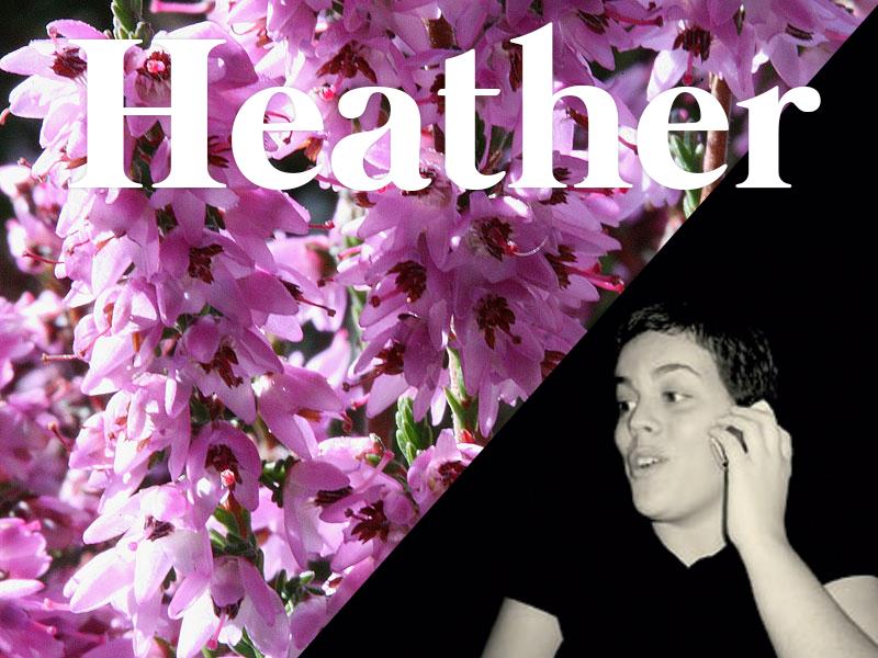 heather flores de bach terapia floral evolutiva luis jimenez