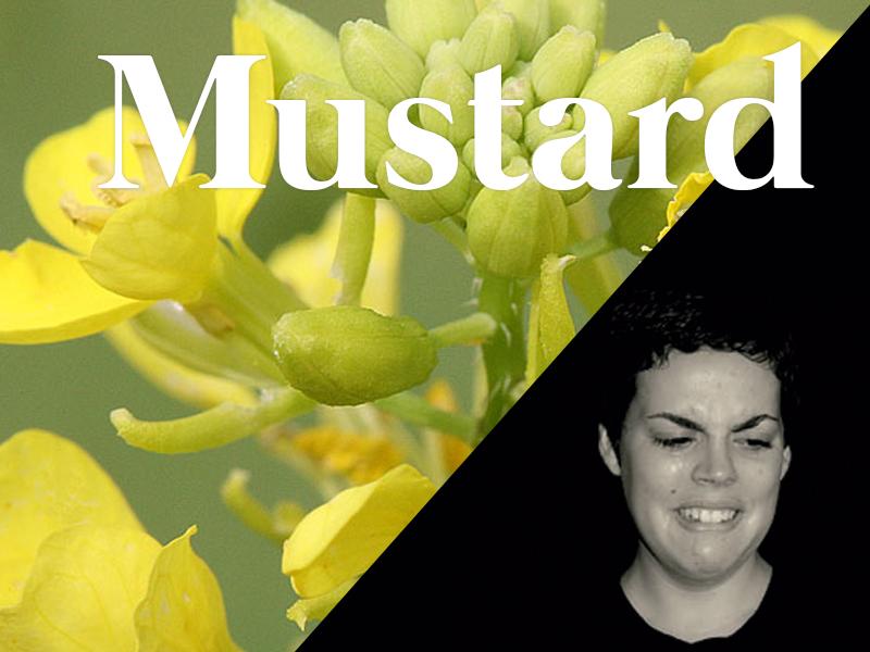mustard flores de bach terapia floral evolutiva luis jimenez